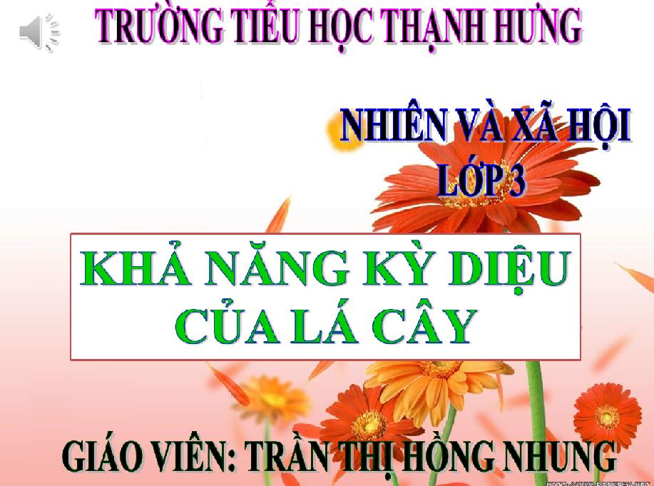 TNXH Lớp 3_Bài 46 Khả năng kỳ diệu của lá cây_TH Thạnh Hưng_TX Kiến Tường