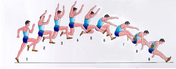Thể Dục 8. Tiết 47: Nhảy Xa - TTTC