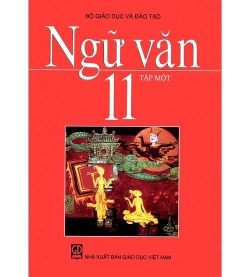 Ôn tập tiếng Việt 11