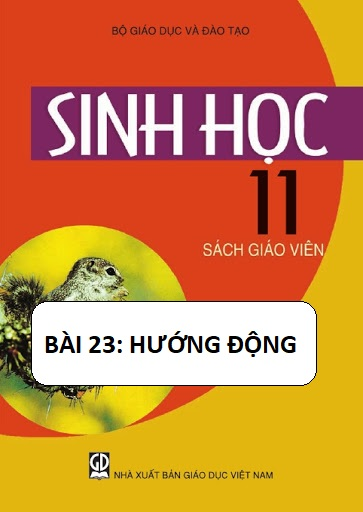 Sinh học 11_Bài 23 Hướng động_THPT Nguyễn Hữu Thọ
