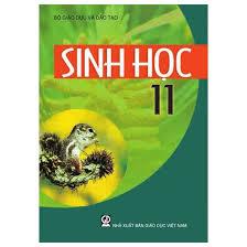 Hướng động_sinh học 11_thpt Thủ Thừa