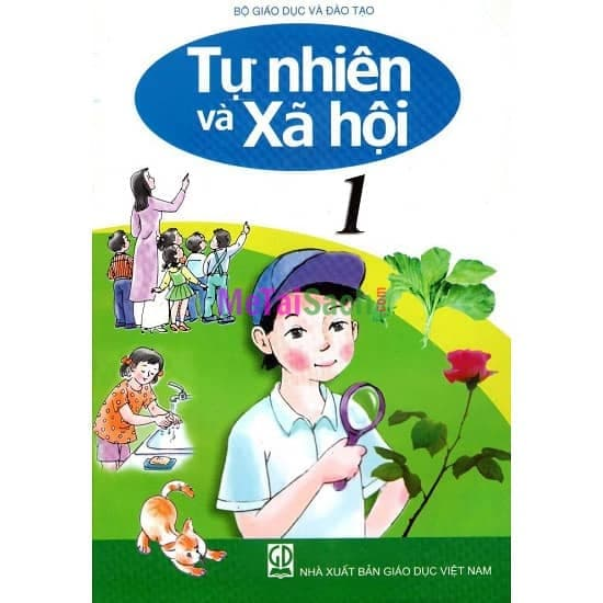 Bài: Cây gỗ - Trường Tiểu học Nguyên Tấn Kiều - Thị xã Kiến Tường