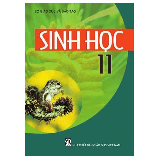tiết 23 On tap chuong I- sinh 11_THPT DONG THANH_CAN GIUOC